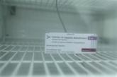 Deuxième distribution de doses de vaccin contre le COVID-19