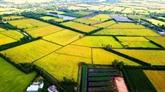 Le delta du Mékong en action pour son développement durable