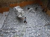Le Vietnam demeurerait le 2e plus grand exportateur mondial de riz en 2021