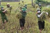 Le Vietnam à un colloque international sur la sécurité alimentaire