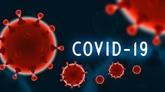 Aucun nouveau cas de COVID-19 signalé en 12 heures