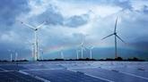 BNN Bloomberg : le Vietnam devient un champion improbable dans la production d'énergie solaire