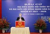 Le secrétaire général du Parti vote dans l'arrondissement de Hai Bà Trung