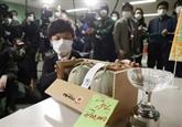 Japon : deux melons vendus aux enchères plus de 20.000 euros