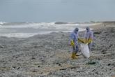 Sri Lanka : une plage polluée par des tonnes de plastique provenant d'un navire en feu