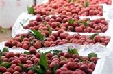 Aider Bac Giang dans la consommation des produits agricoles
