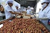 Renforcer les exportations des produits agricoles vietnamiens en Australie