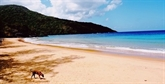 La plage de Dâm Trâu (Côn Dao) parmi les plus belles du monde