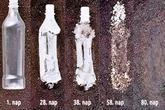 Le Vietnam promeut l'utilisation des plastiques biodégradables