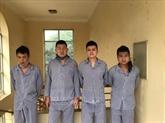 Quatre Chinois arrêtés pour entrée illégale dans la province de Tuyên Quang