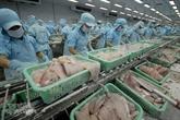 Les exportations de pangasius vers la Russie augmentent fortement
