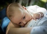 L'allaitement recommandé même en cas de COVID-19, selon une étude