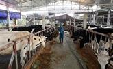 Les exportations de produits de l'élevage progressent de 44% en cinq mois