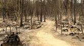 Sécheresse et feux de forêt : la Californie retient son souffle pour les mois à venir