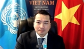 Le Vietnam appelle à relever les défis complexes en RCA et en Syrie