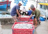 Le Vietnam promeut les moyens de subsistance tirés de la mer