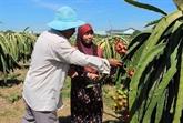 Dông Nai attire les investissements dans les régions de minorités ethniques