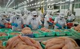 Les exportations de pangasius vers les marchés à fort potentiel en nette hausse