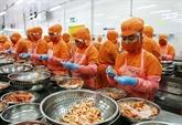 Les exportations de crevettes augmentent malgré la crise sanitaire