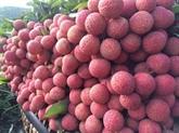 Des mesures aux portes-frontières pour faciliter l'exportation de produits agricoles