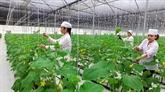 Édification de la Nouvelle ruralité à Thanh Hoa