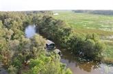 Conservation des écosystèmes dans le delta du Mékong