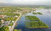 Le Vietnam à l'heure de la restauration des écosystèmes