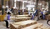 Les exportations de produits en bois augmentent de 42% en cinq mois