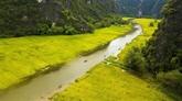 Ninh Binh laboure le sillon de l'agrotourisme