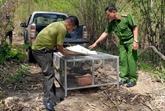Animaux sauvages : amendes de plus d'un milliard de dôngs pour deux affaires à Dak Nông