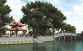 Le phuong dinh du Temple de la Littérature bientôt reconstruit
