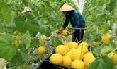 Le 2eDialogue sur les systèmes alimentaires du Vietnam