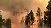 Chaleur, sécheresse, foudre et donc incendies : l'Ouest américain s'attend au pire