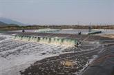 Ca Mau : pour une aquaculture respectueuse de l'environnement