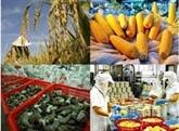 Malgré la pandémie, le secteur agricole de Ninh Binh reste performant