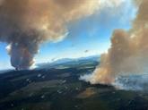 Canicule et incendies : l'Ouest américain et canadien suffoque