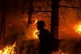 Feux de forêts : les évacuations se poursuivent dans l'Ouest canadien et américain