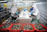 Le Vietnam devient le 4e fournisseur de crevettes surgelées en Russie