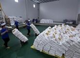 L'Afrique présente un potentiel d'expansion des exportations vietnamiennes