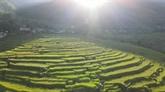 Le tourisme communautaire, un des atouts de Pù Luông