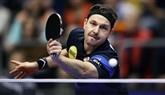 JO-2020 : Timo Boll, le Federer du tennis de table