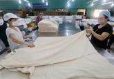 Les échanges commerciaux vietnamo-laotiens font preuve de dynamisme
