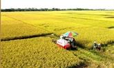 Publication du rapport 2021 sur l'agriculture numérique au Vietnam