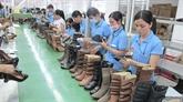 Aider les entreprises vietnamiennes à accéder au marché européen
