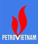 Rentabilité des capitaux propres : PVN dans le groupe mondial des sociétés gazopétrolières