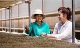 King Coffee annonce un projet de coopération avec des fournisseurs agricoles vietnamiens