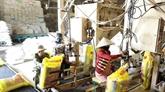Connexion : pour mieux exporter des produits agricoles vers l'Algérie et le Sénégal