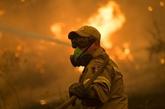 Les incendies en Grèce maîtrisés, selon les pompiers