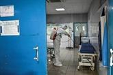 Ébola : portrait d'un virus tueur
