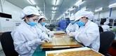 Les investissements étrangers affluent au Vietnam malgré le COVID-19